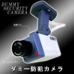 防犯グッズの簡単な説明?カメラの需要?カメラの問題点?