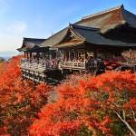 清水寺の紅葉2015の見所の時期と場所?