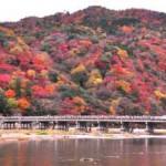 京都嵐山紅葉2015見頃や時期!トロッコ列車の紅葉?